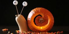 Unique Pumpkin Carving Ideas - Halloween Jack-O'-Lantern Ideas
