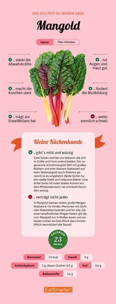Das solltest du über Mangold wissen | eatsmarter.de #mangold #saisonal #infografik