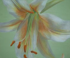 'Sage Lily' mixed media canvas - RoobieDoo Designs