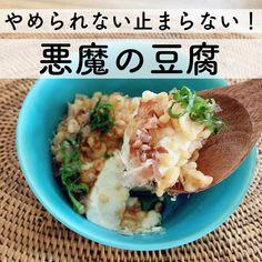 いいね!29.1千件、コメント147件 ― りさ🌱暮らしのヒントさん(@kakei_lisa)のInstagramアカウント: 「【やみつき!悪魔の豆腐😈】  こんにちは🌱 東京は朝から雨の木曜日です。  おかげさまでフォロワーさんが8000人を超えました😭 …」 Asian Cooking, Easy Cooking, Snack Recipes, Cooking Recipes, Healthy Recipes, Daily Meals, I Love Food, No Cook Meals, Food Dishes