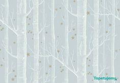 Tapeta Cole & Son Whimsical 103/11051 Woods & Stars:  pokoj Kingi