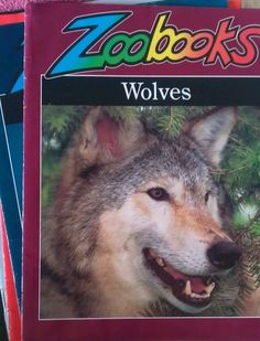 zoobooks Who else remembers these? 90s kid 4 lyfe yo.