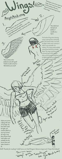 66 Ideas for bird wings drawing angels Drawing Techniques, Drawing Tips, Drawing Reference, Drawing Sketches, Cool Drawings, Sketching, Wing Anatomy, Anatomy Art, Angel Wings Drawing