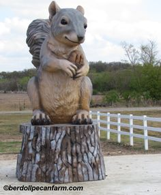Pearl the Giant Squirrel, Cedar Creek TX Giant Squirrel, Texas Roadtrip, Cedar Creek, Lone Star State, Central Texas, Roadside Attractions, Candy Gifts, Chipmunks, Squirrels