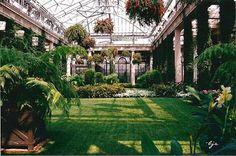 grafika garden, green, and flowers Red Houses, Inside Garden, Garden Pictures, Enchanted Garden, Dark Skies, Favim, Green Grass, Beautiful Gardens, Greenery