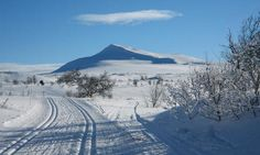 Winter in Rondane - Norway.