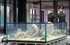 Warszawa - Aquaman Nature Studio