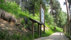 Percorso accessibile (Foto di M.Canziani) del Centro Faunistico del Parco dell'Adamello gestito dall'Associazione Uomo e Territorio Pro Natura (www.uomoeterritoriopronatura.it).