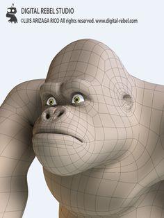 Digital Rebel Academy: Head topology.