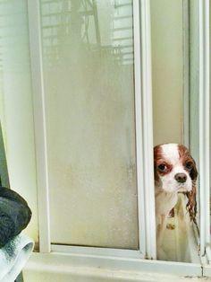 Saliendo de la ducha.