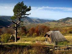Autumn in beautiful Zlatibor Mountain