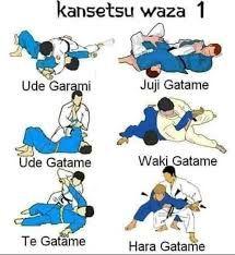 Martial Arts Quotes, Martial Arts Styles, Martial Arts Techniques, Self Defense Techniques, Martial Arts Workout, Martial Arts Training, Judo Training, Jiu Jitsu Training, Japanese Jiu Jitsu