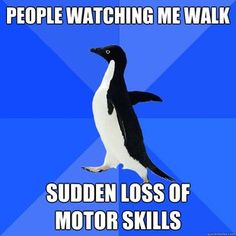 Socially Awkward Penguin... reading a whole bunch of these for some reason this one made me LOL