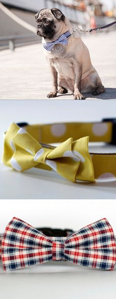 Bow Tie Collar ( http://uncovet.com/featured-goods/the-bow-tie-collar?via=HardPin=type129 )
