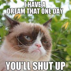 grumpy dream