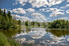 A nice tilt and shift view of a sunny village river with cloud reflections, tree, swamp and blue sky
