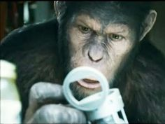 Rise of the Planet of the Apes 2011 Director: Rupert Wyatt Science fiction film/Thriller Will Rodman, a scientist at the San Francisco biotech company Gen-Sys, is testing the viral-based drug ALZ-112 on chimpanzees to find a cure for Alzheimer's disease. ALZ-112 is given to a chimp named Bright Eyes, greatly increasing her intelligence...... Ted Frank