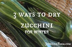 Are you looking for zucchini recipes? Are you tired of chocolate zucchini cake? Zucchini relish? Zucchini in your pasta sauce? Are you locking your car doors when you drive into town in case zucchini follows you home? Take that prolific blessing of zucchini and dry some zucchini for winter. Don't waste the abundance. Here are …