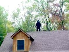 Good Honest Roofers are as rare as Sasquatch on a roof!  Bare Naked Roofer in Toronto, Aline Roofing believes in Bare Bones Pricing and Naked Honest Quotes for Roof Replacement and Roof Repairs in Toronto and the GTA #RoofRepair #Toronto #BareNakedRoofer #BNRTO #AlineTO  SASQUATCH CAUGHT ON VIDEO - YouTube