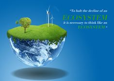 Our Ecosystem would provide everything we needed. But for that, we need to conserve it. Save our Ecosystem.