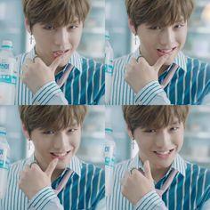 Kång Dåniel Produce 101 Season 2, K Idol, Korean Singer, Albums, First Love, Puppies, Group, Boys, Anime