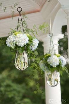 back yard ideas hydrangea