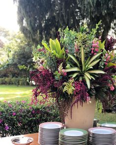 KING. #taispuntel Tropical Garden, Tropical Flowers, Garden Wedding, Dream Wedding, Decoration Evenementielle, Outdoor Flowers, Vase Arrangements, Arte Floral, Flower Planters