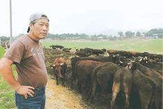 国の殺処分命令を拒否し、被ばく牛を飼い続ける吉沢さん=18日、福島県浪江町の希望の牧場・ふくしま ▼19Jun2014河北新報|被ばく牛と都内で猛抗議 福島・浪江の牧場代表、あす計画 http://www.kahoku.co.jp/tohokunews/201406/20140619_63006.html #Tohoku2011 #Fukushima_nuclear_disaster #Masami_Yoshizawa