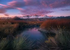 Sunrise light just begins to light the peaks of the Eastern Sierra. Owens valley comes alive with color in the winter, oddly enough. Braving the bitter cold on a still morning in the Owens Valley is one of my favorite feelings. While this may be a more painterly, embellished representation of it, it really is a sight to behold. I'm really fond of the aqua green of the sage brush, and the pungent reds of the red willow. Seeing this area in the summer, is not as impressive, in my opinion. Too…