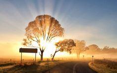 world roads sign nature landscapes fields trees sky sun sunlight sunbeam sunrise…