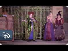 'Hocus Pocus Villain Spelltacular' Debuts at Magic Kingdom Park for Mickey's Not-So-Scary Halloween Party « Disney Parks Blog - if I win the lotto I'm flying the family to Florida for this!!