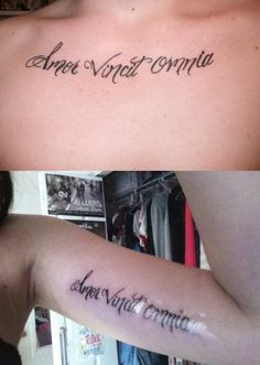 """""""Love Conquers All"""" in Latin.  I really love the girl's story behind it:    ----  My boyfriend passed away this past Friday - August 7th… Four years just doesn't seem like much, when you knew forever existed. It hurts me so bad to hear my parents say he was their son-in-law, and it hurts me even more - basically kills me to hear his mom say I was her daughter-in-law. We were perfect. We had our whole future in line and planned.  He got the tattoo on his chest to surprise me; I didn't b..."""
