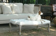 Upholstered Furniture at Capitol Park Antiques, Interiors & Gardens.