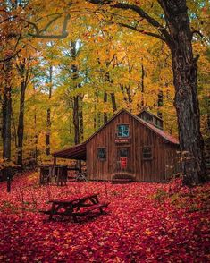 Cabin surrounded by the fall 🍂🍁.Tag someone you would love to spend time in these cabin 😍 Log Cabin Exterior, Log Cabin Homes, Log Cabins, Mountain Cabins, Cabina Exterior, Building A Treehouse, Building Homes, Cabin In The Woods, Autumn Scenery