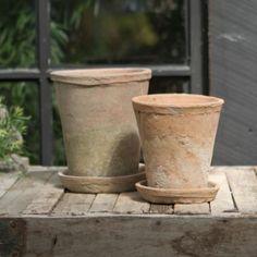 Terracotta Rose Pot, Large
