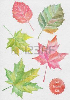 dibujos de hojas de otoño: Fall Leaves watercolor illustration. Real paper texture.