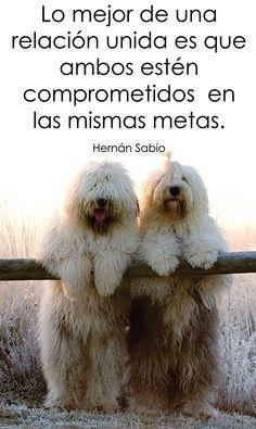 〽️ Lo mejor de una relación unida que ambos estén comprometidos en las mismas metas. Hernán Sabio