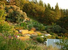 sustainable mini farming