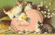 Easter cats 003