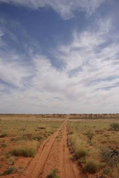 Strzelecki Desert - South Australia ~ Stunning Places   - Explore the World with Travel Nerd Nici, one Country at a Time. http://TravelNerdNici.com