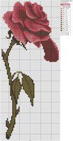 Beauty and The Beast - Enchanted Rose by Makibird-Stitching