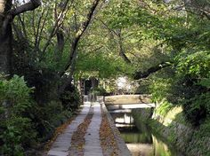 Paseo-del-filosofo-Kyoto