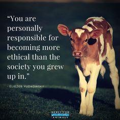 Live compassionately. Go vegan.