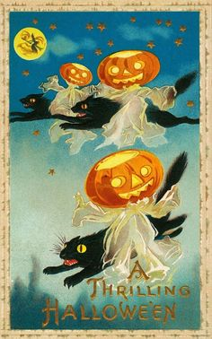A 1910 Vintage Halloween postcard with three Jack-O-Lanterns and 3 black cats.  Free to download along with many more Vintage Halloween images