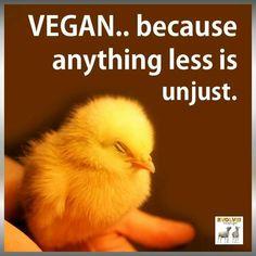 #vegan because anything less is unjust