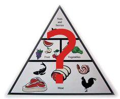 L'alimentation paléo discréditée 1/2: Argumentation