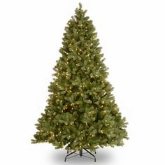 7 Ft. Feel-Real Bayberry Spruce Hinged Christmas Tree with 700 Clear Lights  http://www.fivedollarmarket.com/7-ft-feel-real-bayberry-spruce-hinged-christmas-tree-with-700-clear-lights/