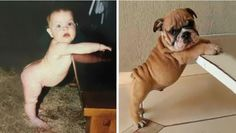 14 photos de choses qui ont exactement la même apparence et c'est choquant