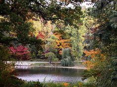 Hidden Lake Garden Tecumseh, MI--beautiful, I want to go back. Nature Desktop Wallpaper, Beautiful Nature Wallpaper, Michigan Colors, Lake Garden, Hidden Garden, Fantasy Landscape, Landscape Design, Amazing Nature, Botanical Gardens
