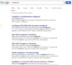 Google SERP - données Insdigbord Comment checker sa page rank !